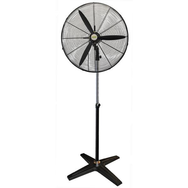 Pedestrian Fan
